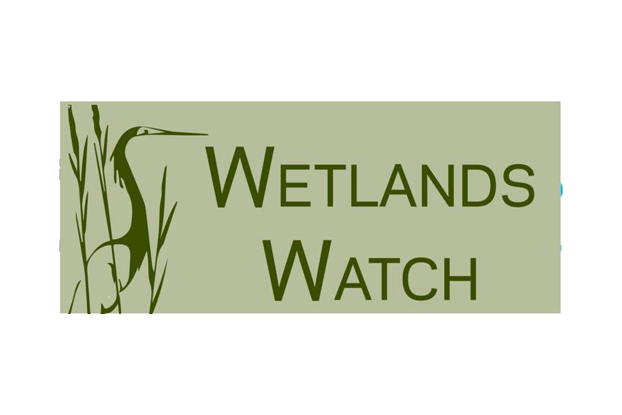 Wetlands Watch